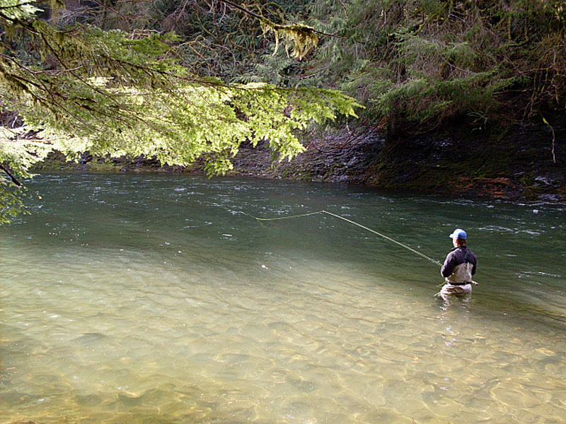 north oregon coast steelhead scott o 39 donnell fly