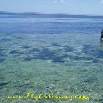 Farquhar Atoll