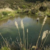 Poronui Ranch